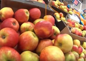 Заграничные яблоки