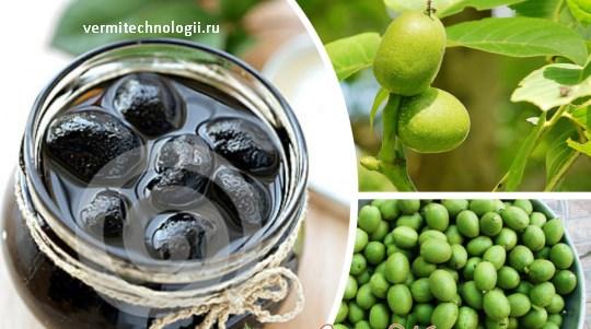 Варенье из грецких орехов купить 🥝 польза и вред, как варить варенье с орехами, чем оно полезно