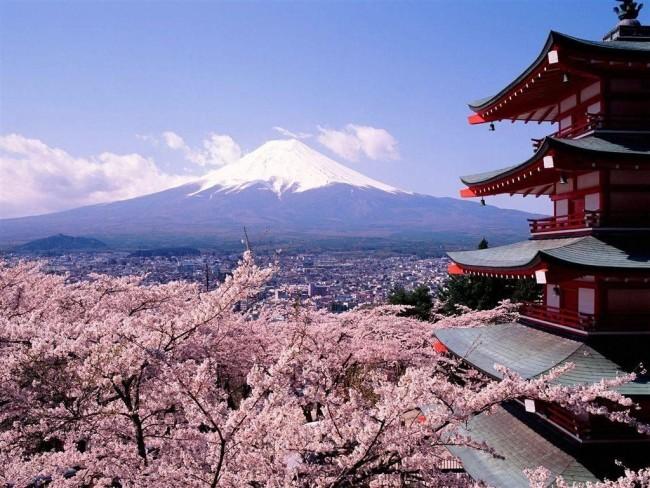 7 Цветущая сакура - символ мимолетности жизни